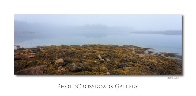 Atlantic Coast in fog Maine USA